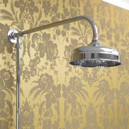 Edwardian Shower Rose Standard