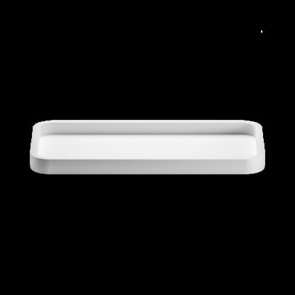 Monochrome Tray