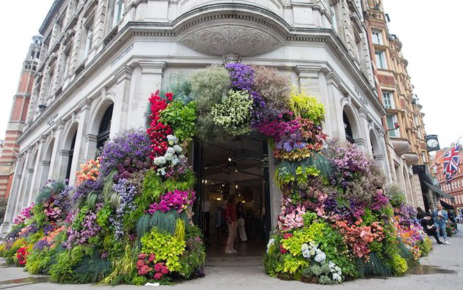 cf0408e62 May is an exciting month for us as it s the return of the coinciding flower  festivals
